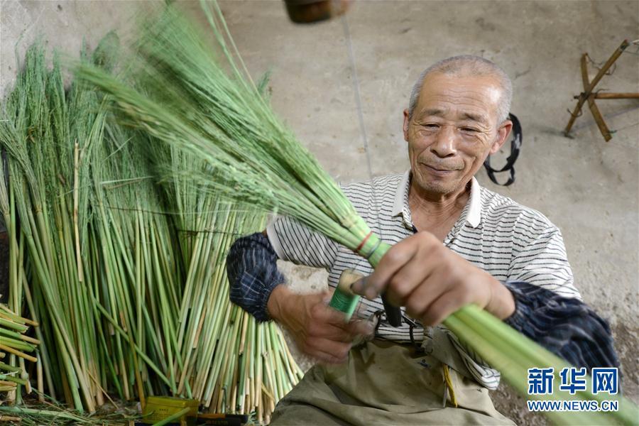 (經濟)(1)河北樂亭:笤帚出口助增收