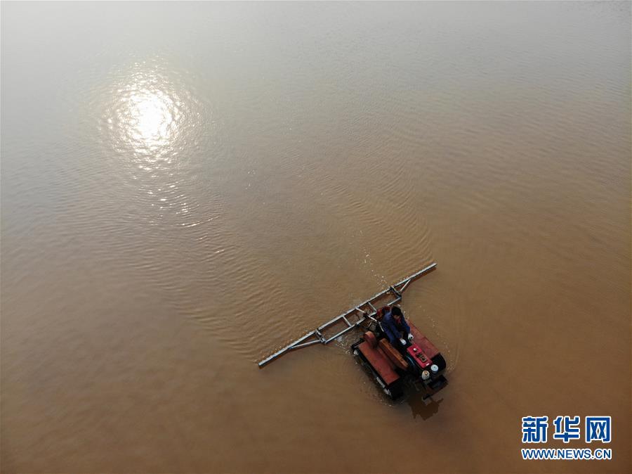 (社會)(1)河北黃驊:鹽場工人活碴忙