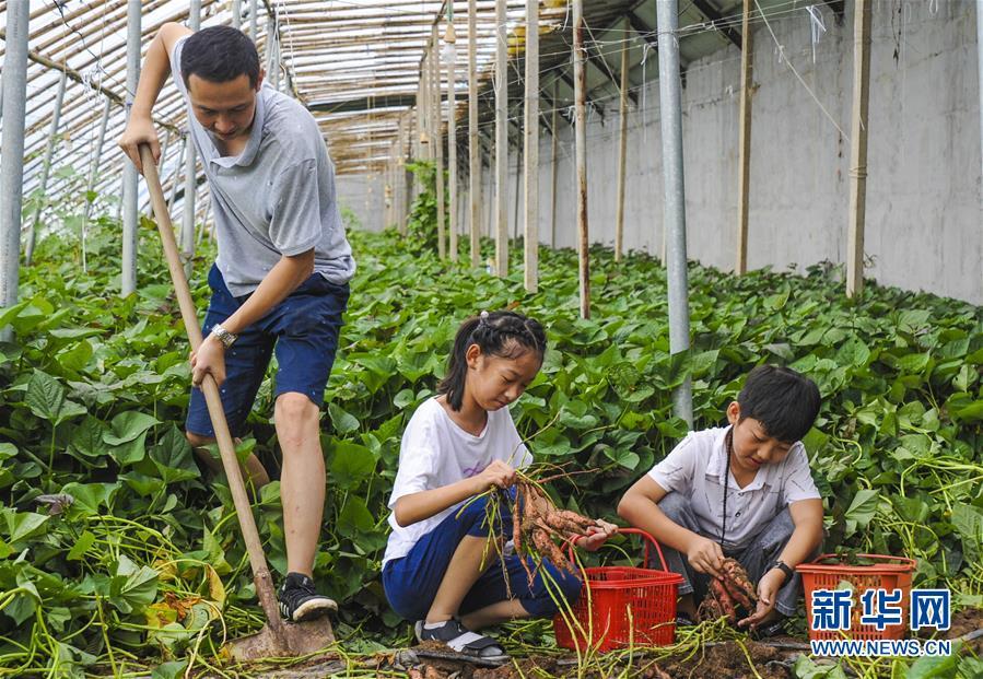 (经济)(2)河北大城:特色乡村游助力乡村振兴