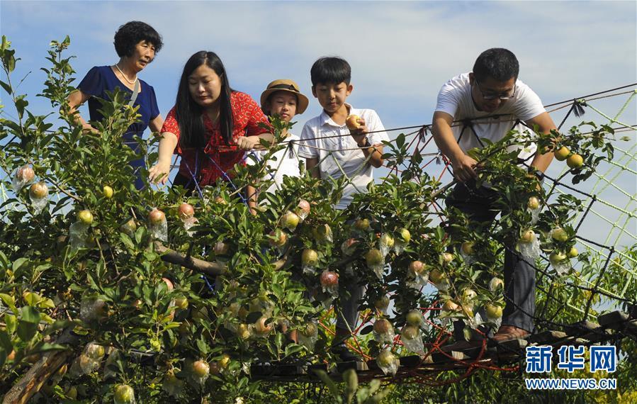 (经济)(3)河北大城:特色乡村游助力乡村振兴