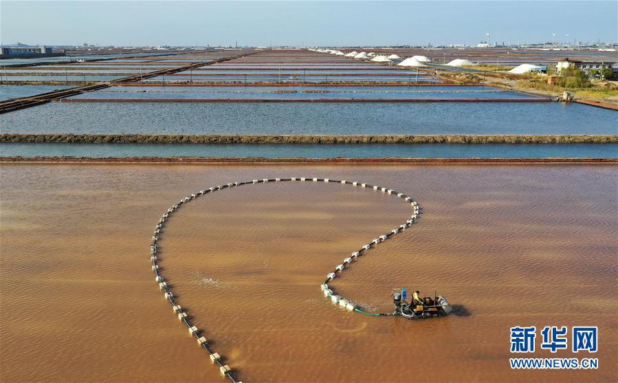 (經濟)(1)河北曹妃甸:南堡鹽場收獲秋鹽