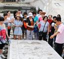 遵化:五萬多遊客五一暢遊清東陵