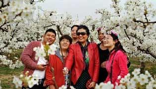 滄州市:上半年接待國內遊客747.26萬人次