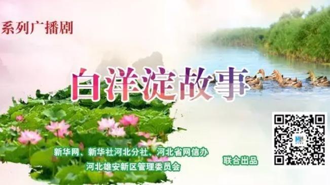 系列广播剧《白洋淀故事》53期:三色鱼丸满口香