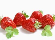 曹妃甸:盐碱地规模化种植草莓获得成功