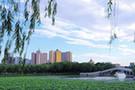 滄州新貌4