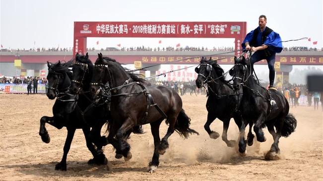 中华民族大赛马·2018传统耐力赛首站在河北安平开赛