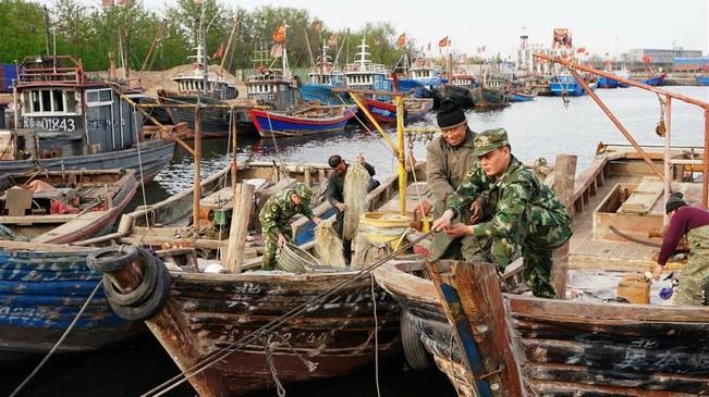 黄渤海休渔千帆归港