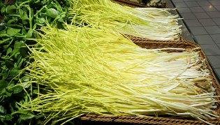 蒜黄,最干净的蔬菜
