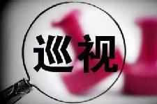 九届省委第二轮巡视被巡视党组织整改情况公布