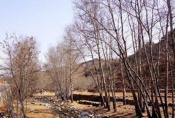 河北太行山區農民談惠農政策變遷