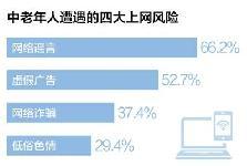 """互联网前沿追踪:""""银发族""""上网 谨防四大风险"""
