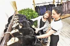 2018中国(辛集)国际皮革皮草时装周开幕
