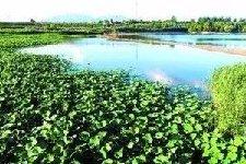 到2020年官厅水库将建成华北最大湿地公园