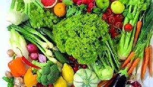 京冀開展蔬菜綠色生産技術對接