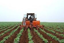 沧州:2960名新型职业农民将持证上岗