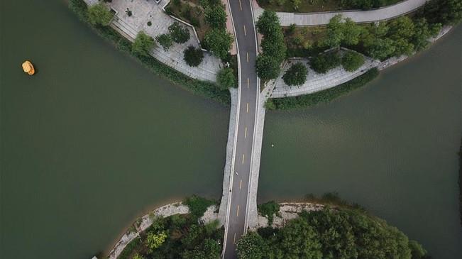 河北安平:生态优化工程扮美城乡