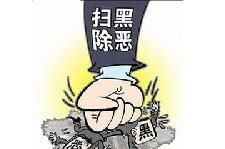 张家口:专项行动将扫黑除恶斗争引向深入