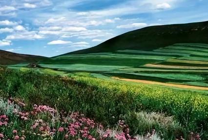 京北第一草原