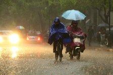 全力应对强降雨 河北各地多措并举确保平稳度汛