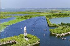 河北雄安新区开通生态环境污染举报热线