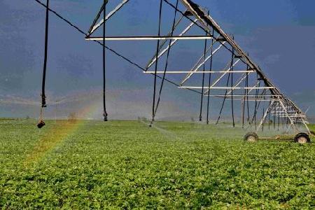 今后三年河北每年在贫困地区创建10个省级现代农业园区