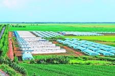 河北省15个市、县(区)拟定农业示范区
