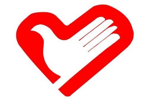 河北省网上注册志愿者已达528万余人