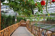 河北:省級農業科技園區可獲百萬元補助