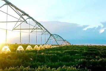 河北省再担保体系基本实现设区市全覆盖