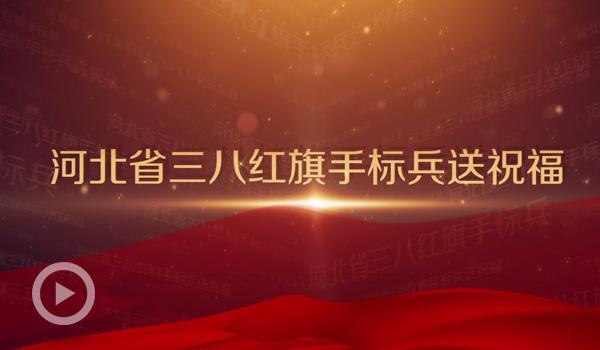 河北省三八紅旗手標兵婦女節送祝福
