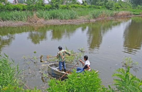 北戴河:加強河道治理 提升海域環境