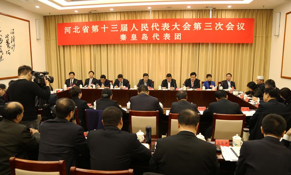 秦皇島代表團在審議政府工作報告