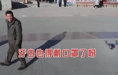 "張北bao)quot;土味""宣傳釋放(fang)""硬(ying)核(he)""力量"