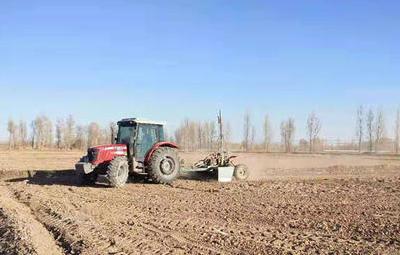 農業高質量發展