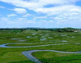 閃電河國家濕地公園