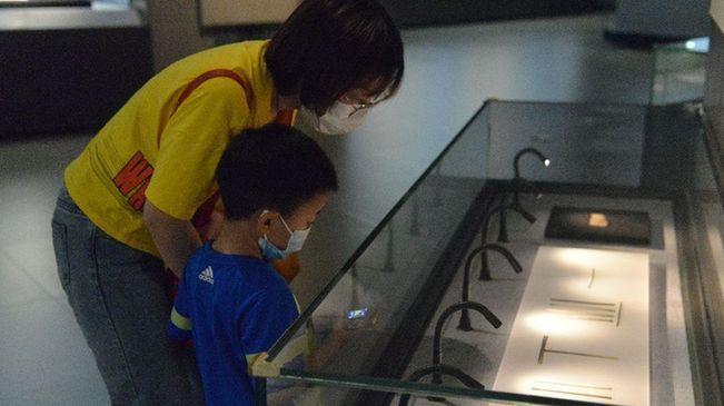 國際博物館日|走進河北博物院樂享文化盛宴