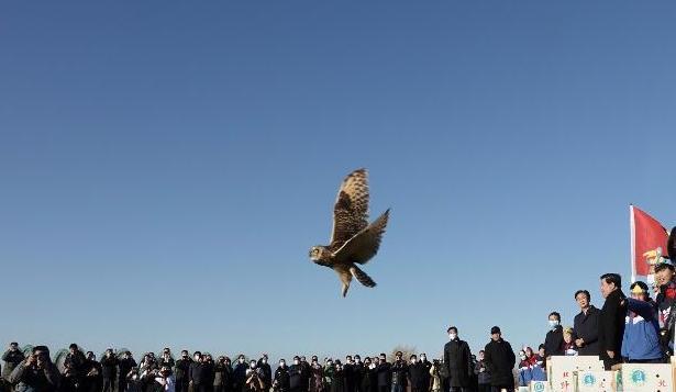 飛翔吧!秦皇島市開展鳥類放飛活動
