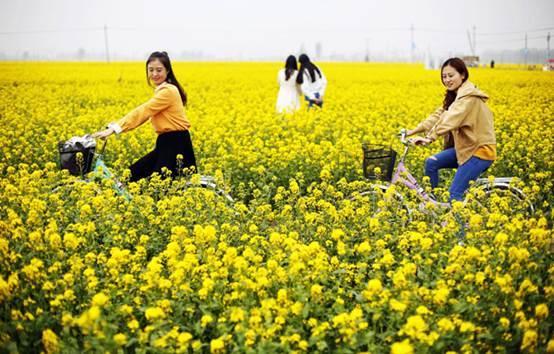 阳春三月赏花季,这些注意事项你知道吗?
