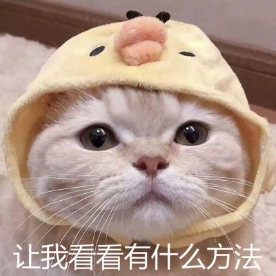 http://www.fanchuhou.com/jiaoyu/1746026.html