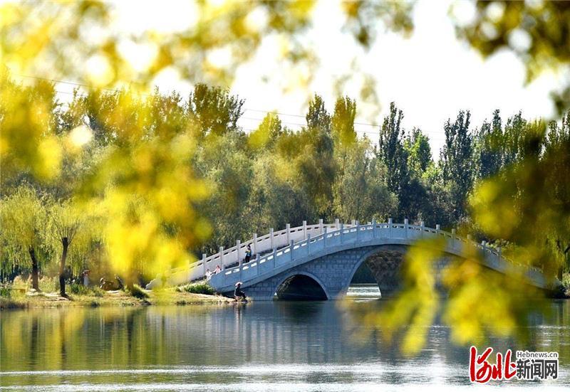 省级园林县城标准_河北邢台:全力创建国家森林城市